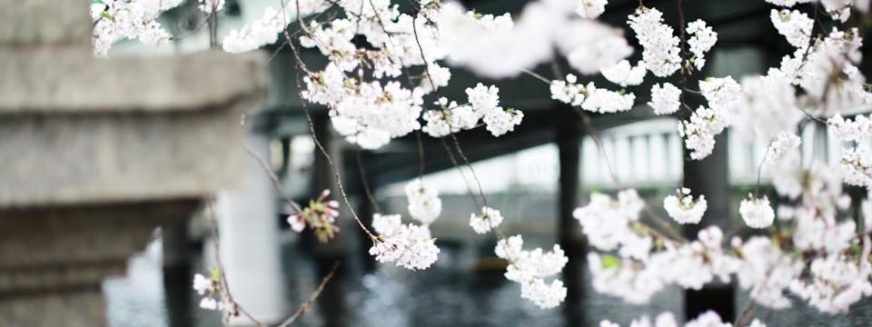 明石市の貸教室・レンタルスペース|金ヶ崎文化教室
